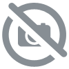 lot de 4 verres  Quadri  Massa 25 CL -